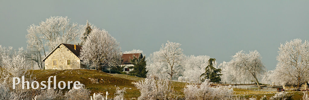givre,hiver,miribel,objet,panorama
